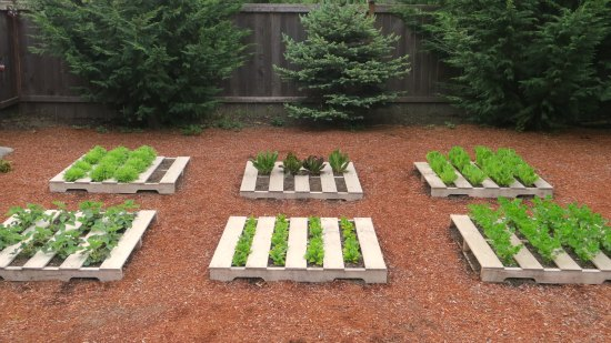 Make Your Neighbors Jealous With These DIY Pallet Planters Ideas ...