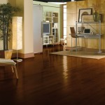 Best Dark Hardwood Floors Ideas,hardwood floors design ideas