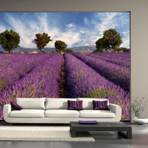 modern wall murals designs interior design