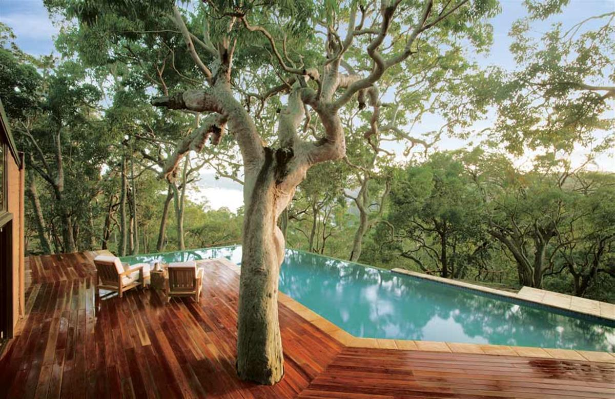 natural style wooden deck design ideas with tree1