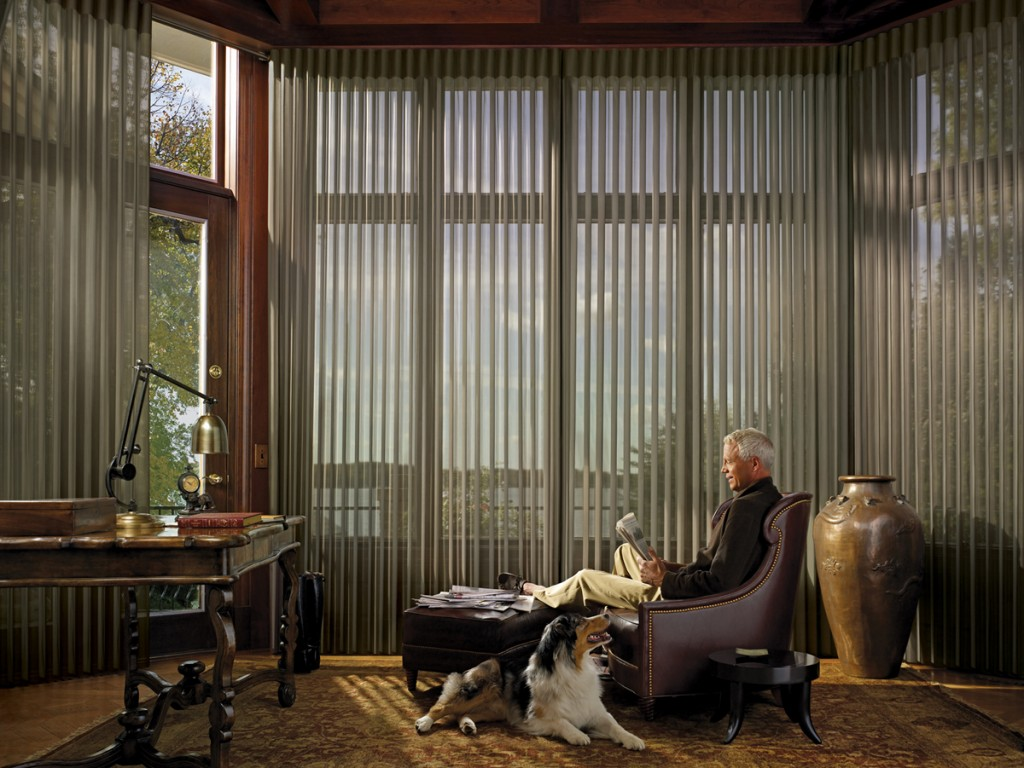 15 Window Treatments for Sliding Glass Doors Ideas - hgnv.