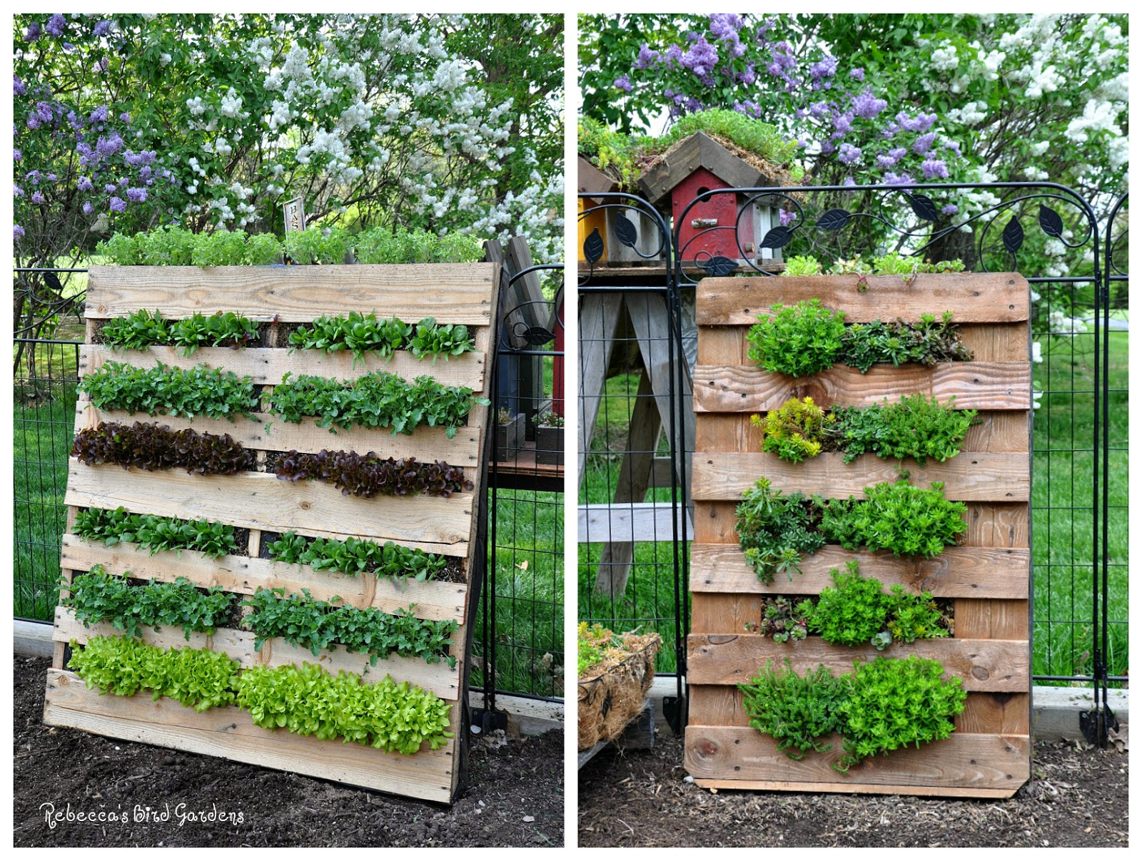 Make your neighbors jealous with these diy pallet planters for How to make a vertical garden using pallets
