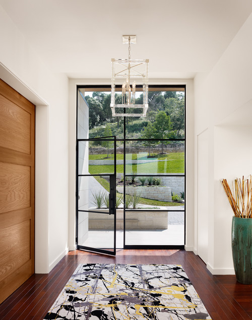 stunning contemporary glass entry door
